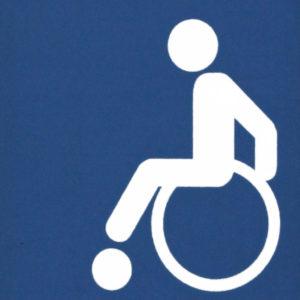 Mobil Teilhaben Bus Fahren Lernen Symbol Rollstuhl