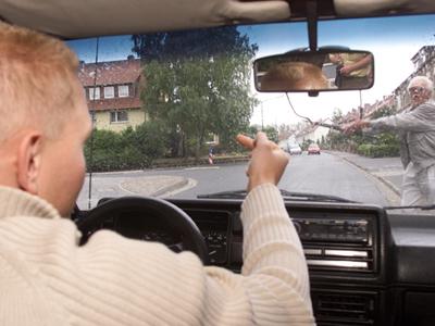 Der ideale Verkehrsteilnehmer